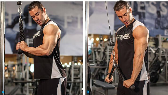 tríceps na polia alta treino de braços.jpg